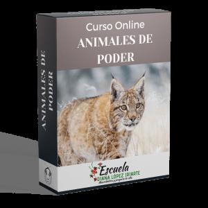 Curso-animales-de-poder-min-Diana-Lopez-Iriarte.png