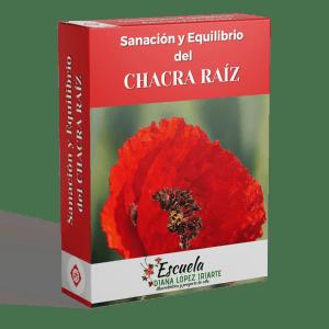 Sanacion y equilibrio del chacra raiz - Diana Lopez Iriarte