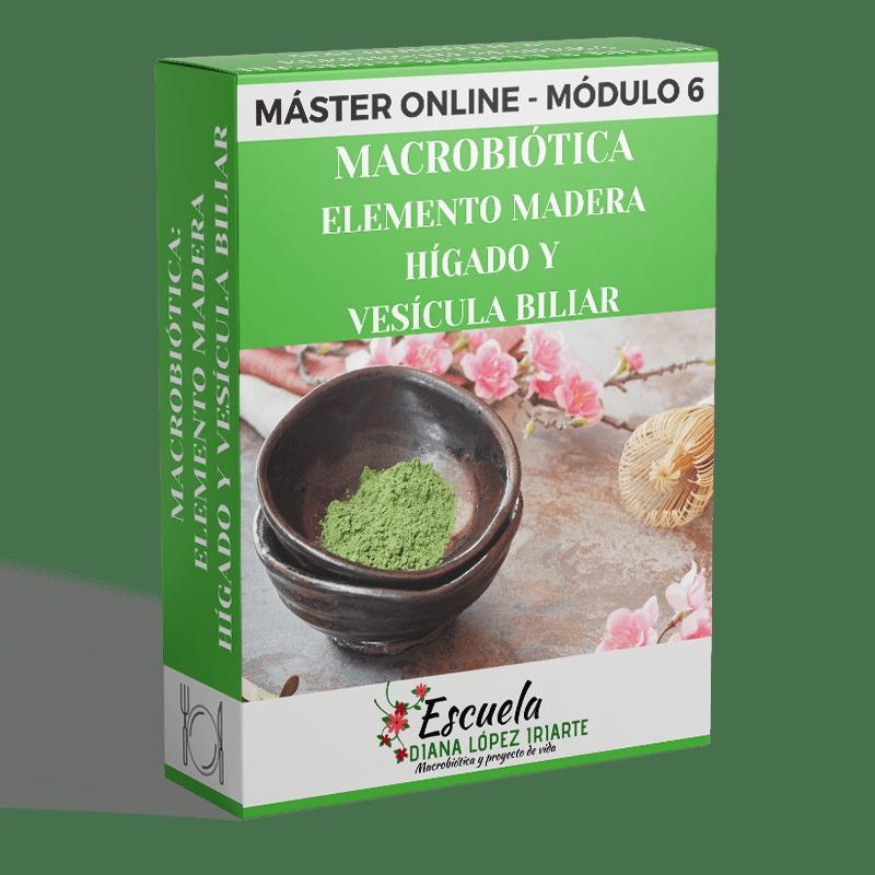 Master-Macrobiotica-Elemento-madera-higado-y-vesicula-biliar-Modulo-6-Diana-Lopez-Iriarte.png