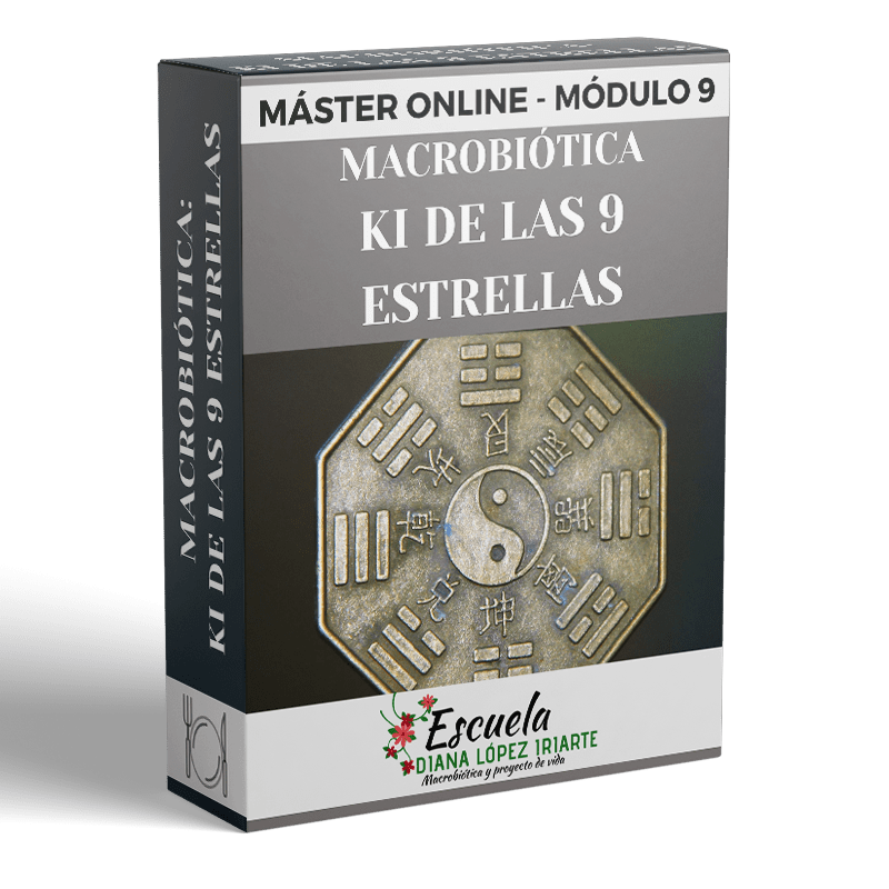 Master-Macrobiotica-Ki-de-las-9-estrellas-Modulo-9-Diana-Lopez-Iriarte.png