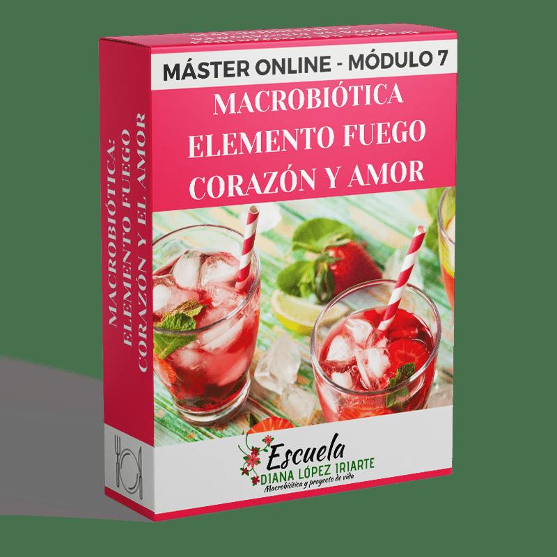 Master-Macrobiotica-elemento-fuego-corazon-y-amor-Modulo-7-Diana-Lopez-Iriarte.png
