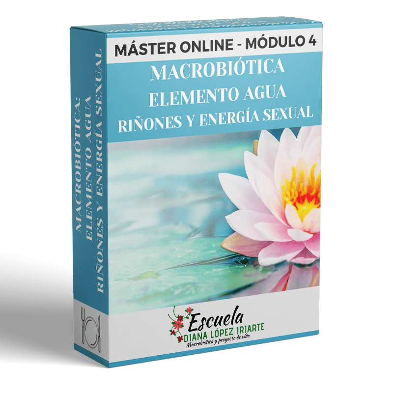 Master-Macrobiotica-elemtno-agua-rinones-y-energia-sexual-Modulo-4-Diana-Lopez-Iriarte.png