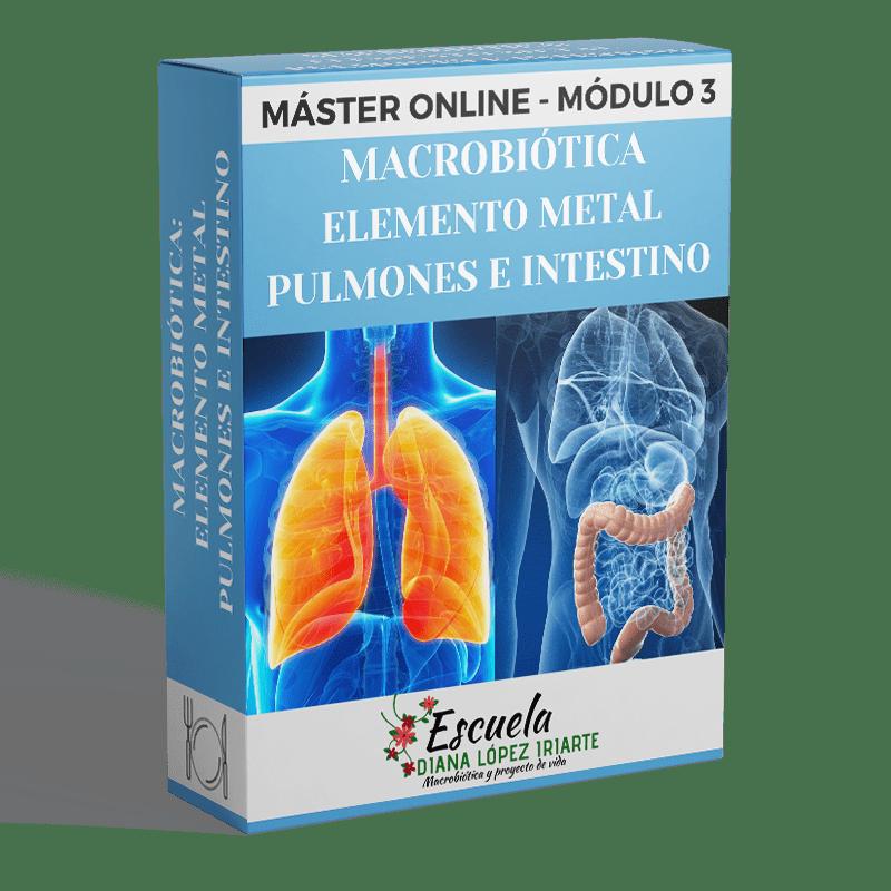 Master-Macrobiotica-elemtno-metal-pulmones-e-intestino-Modulo-3-Diana-Lopez-Iriarte.png