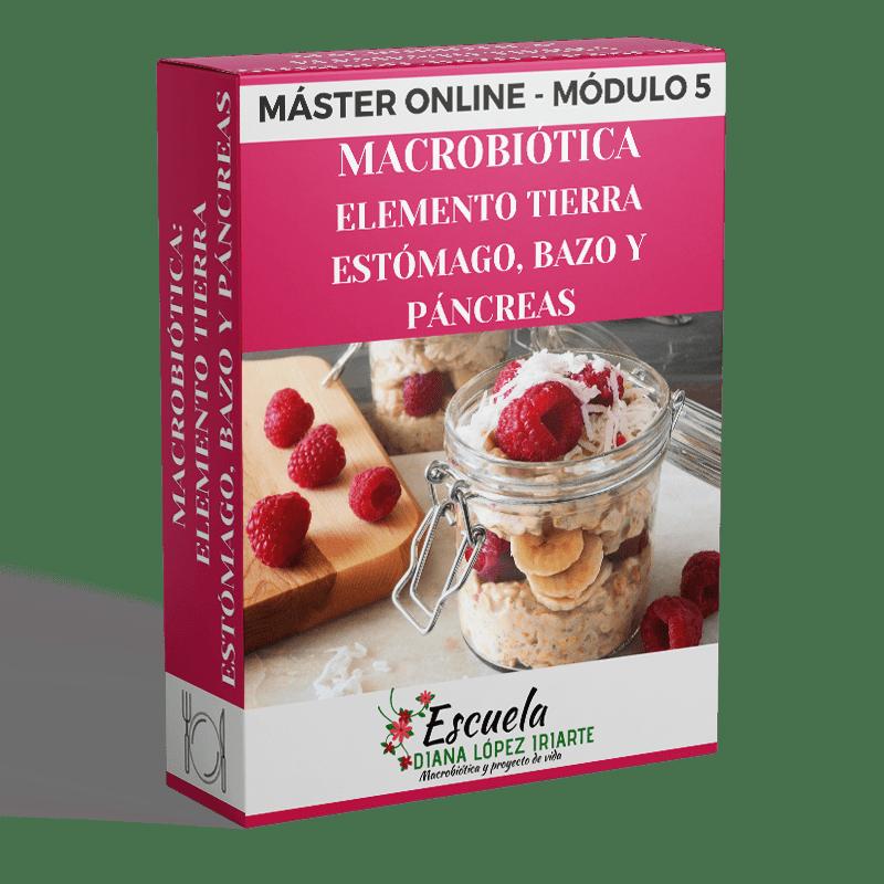 Master-macrobiotica-elemento-tierra-estomago-bazo-y-pancreas-Modulo-5-Diana-Lopez-Iriarte.png